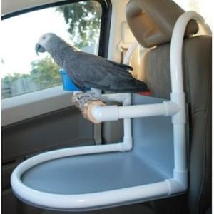 Bird_Car_Seat__28854.1400509179.1280.1280