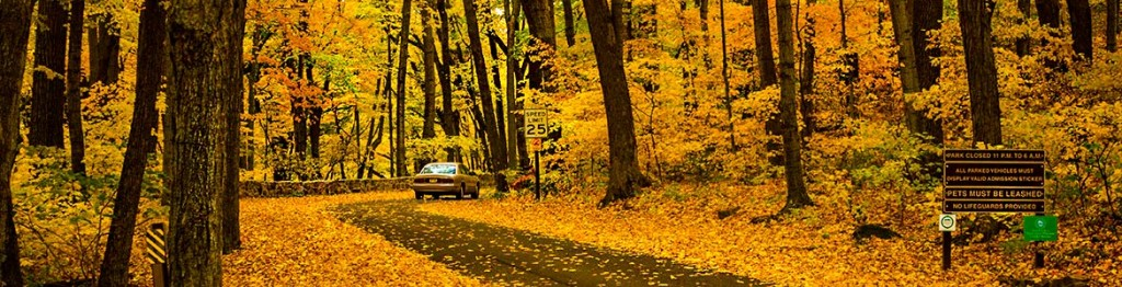 devilslakewisconsin.com fallcolors-header