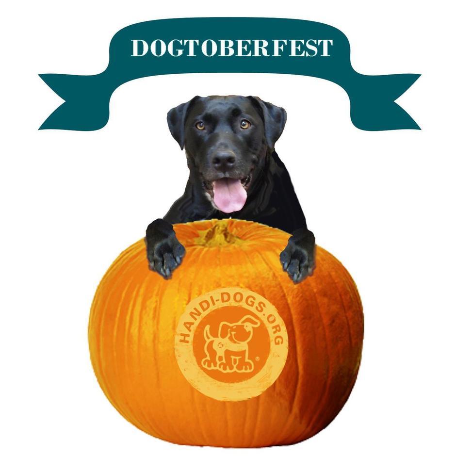 Handi Dogs Dogtoberfest