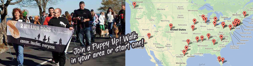 Puppy Up banner-walks-V2
