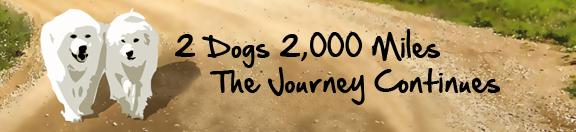 PuppyUp banner