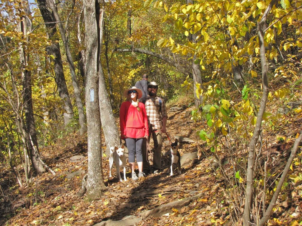 Shenandoah Couple Hiking w:Dogs