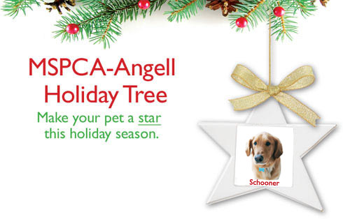 MSPCA holiday tree 1
