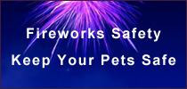 fireworks_safety_2011