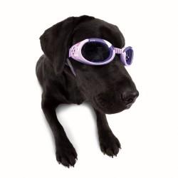 Doggles ILS 1