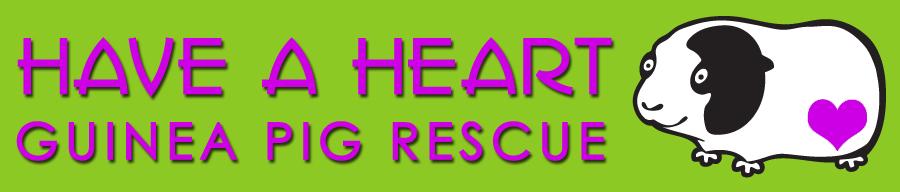 Have  Heart GP logo