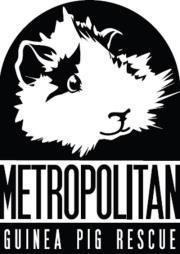 Metropolitan GP rescue logo
