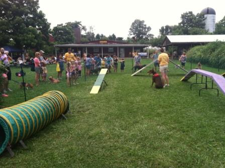 Dog Days Bloom Obstacle Course