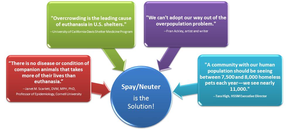 HSSM spay-neuter-chart