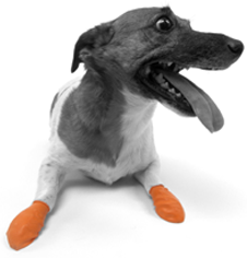 PAWZ_boots 2