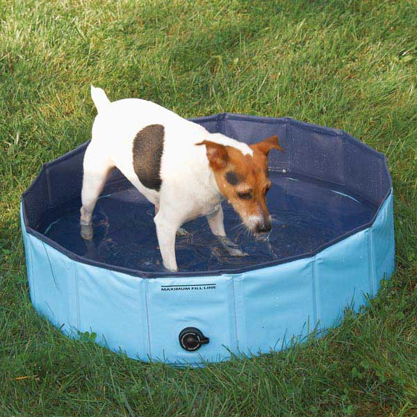 Guardian dog pool small