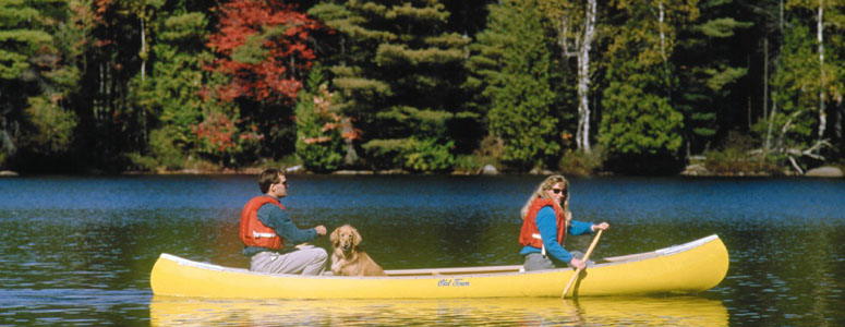 Lake George canoe with dog