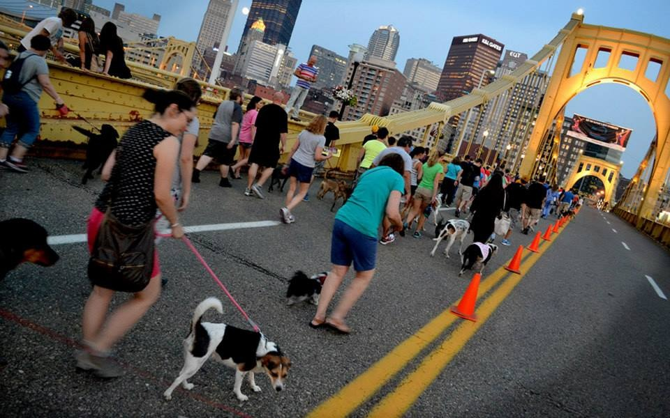 Pittsburgh Pup Crawl photo