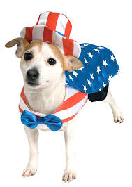 Uncle Sam dog 1