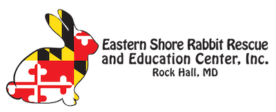 eastern shore rabbit Logo