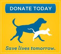KHS donate