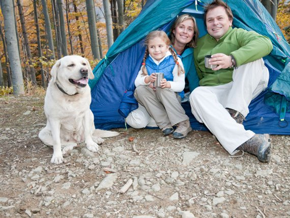 family-camping-with-dog-petMD
