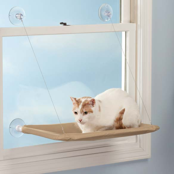 Cat window shelf 1