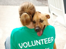 FL HS volunteer with dog