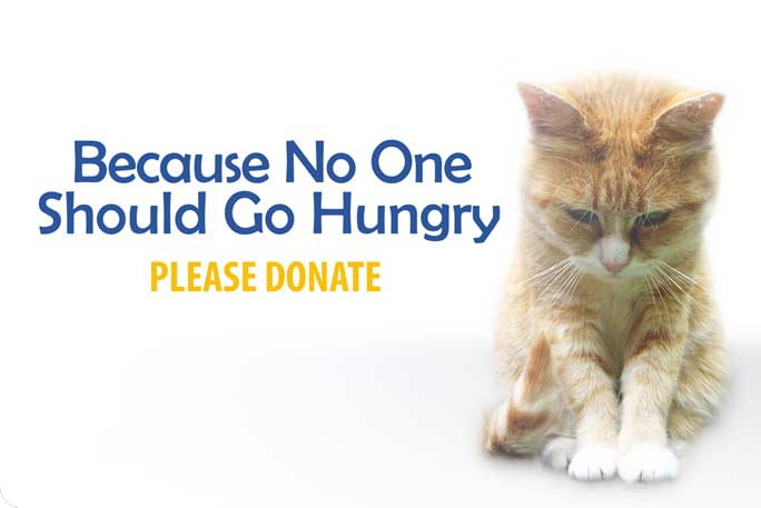 donate pet food-cat