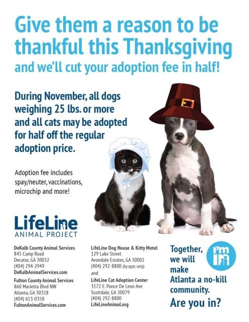 lifeline-november